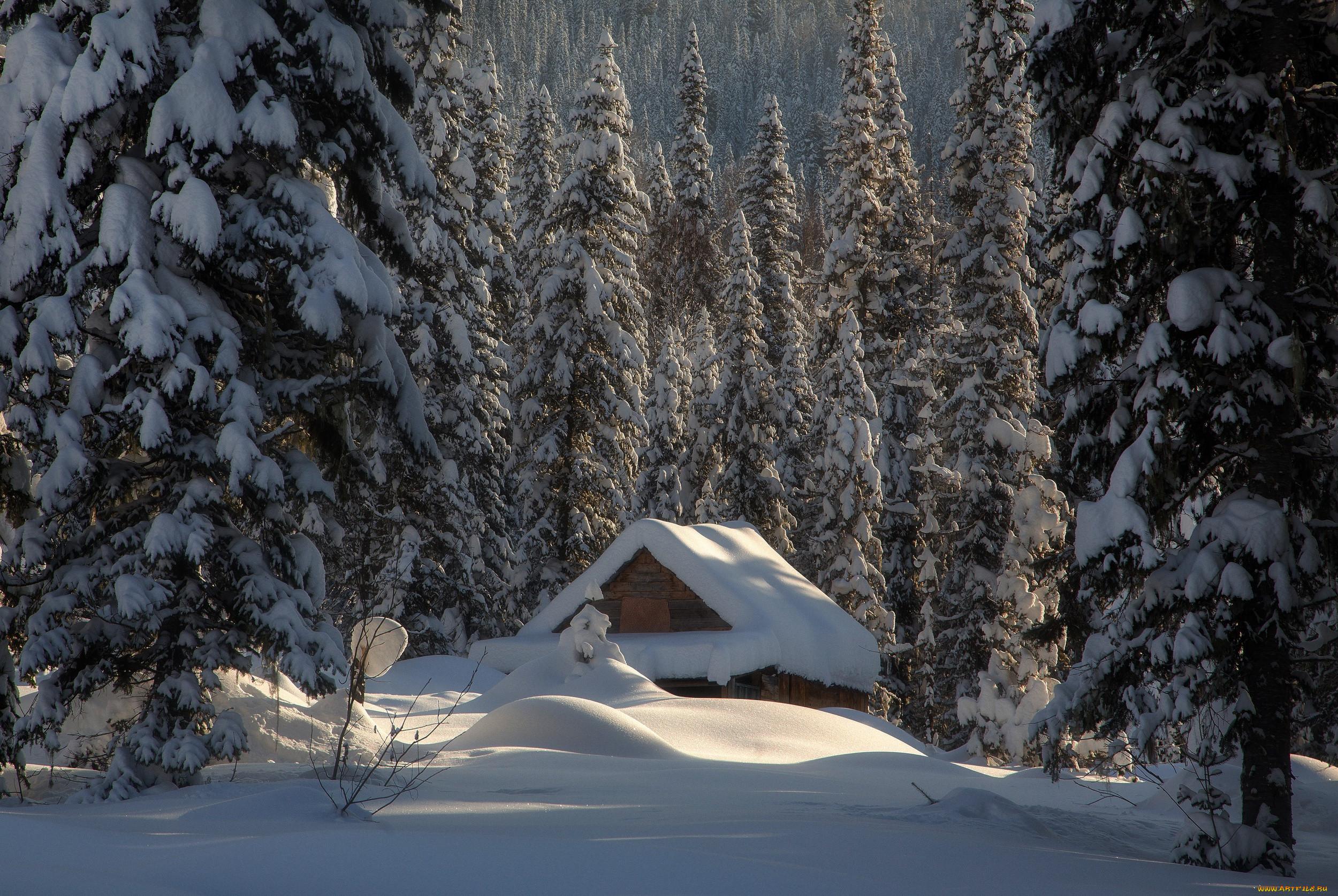 продаже часто фотообои домик в лесу зимой приготовления
